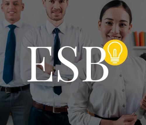 ESB logo on a grey out overlay